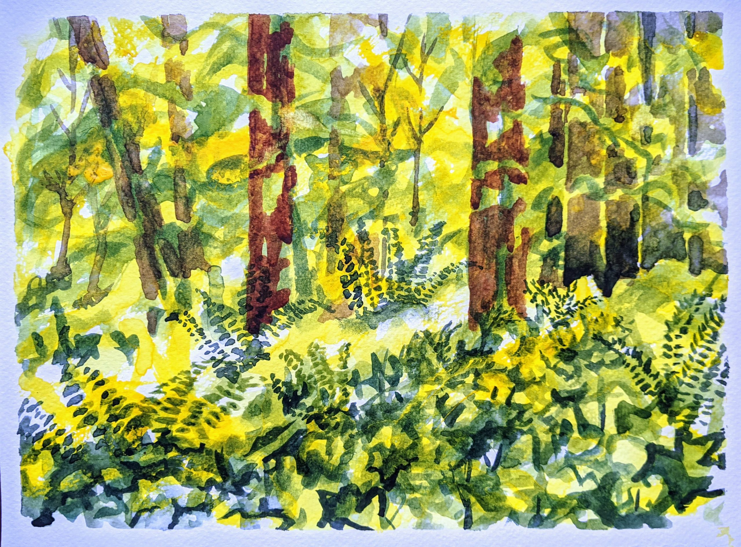 Forest 1   Watercolor   9 x 12   Unframed   $100